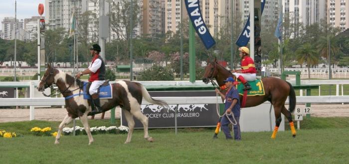 Didimo, campeão PSI